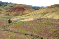 Painted Hills (51)