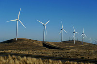 Wildhorse Wind & Solar Energy Center (17)
