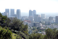 Hollywood from Griffith Park