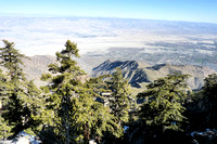 Palm Springs from Mt. San  Jacinto (2)