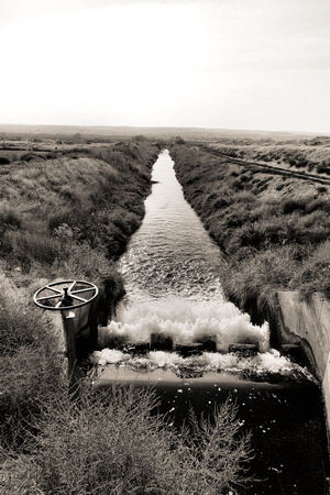 Columbia Basin Project Canal (11)